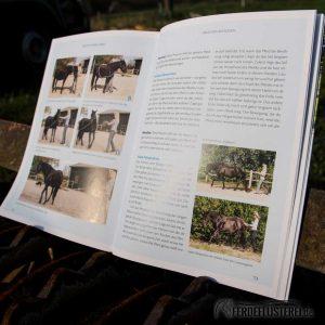 Crystal Verlag Buch Wissen Pferde Reiten ohne Gebiss Lesebeispiel