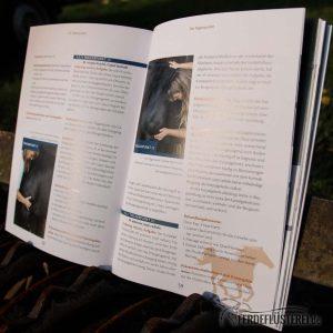 Crystal Verlag Buch Wissen Pferde Muskelprobleme bei Pferden lösen Lesebeispiel