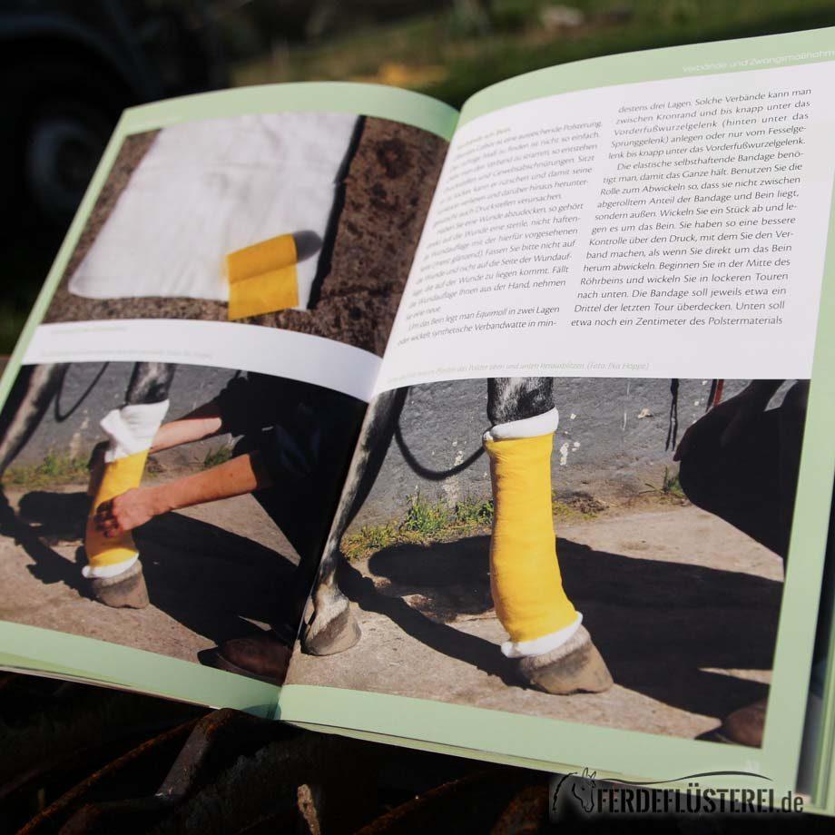 Crystal Verlag Buch Wissen Pferde Erste Hilfe Pferd Lesebeispiel