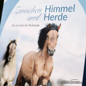 Crystal Verlag Buch Wissen Pferde Himmel und Erde Cover nah