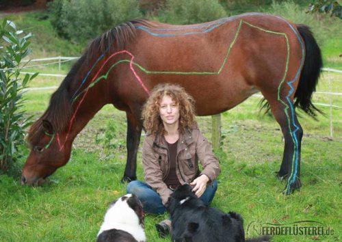 Meridiane am Pferd