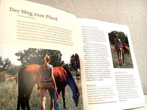Buch Seite Was denkt mein Pferd