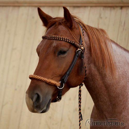 Carey Barefoot Amber Sidepull Zaumzeug Pferd