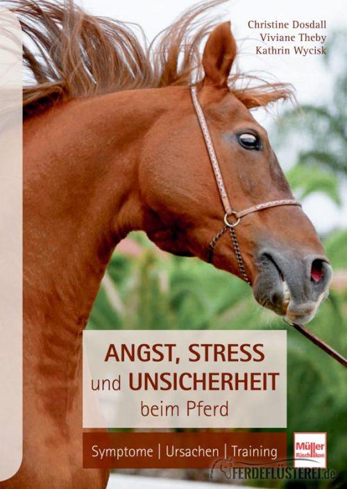 Angst, Stress und Unsicherheit bei Pferden