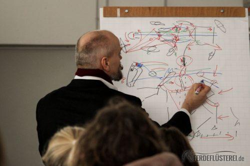 Bent Branderup Kurs akademische Reitkunst