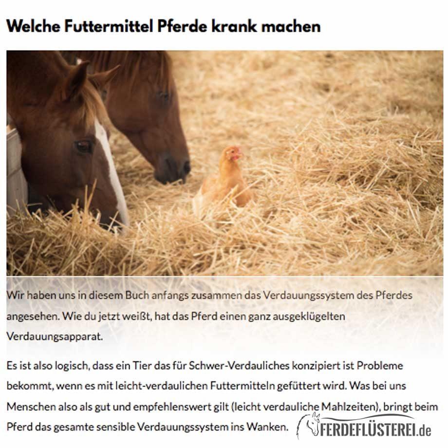 Pferde Kochbuch Herdis, Tanja, Lina, Petra