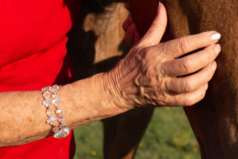 Vertrauen statt Kontrolle! Sanftes Pferdetraining a la Tellington-Jones 1