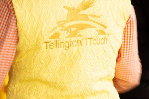 Mit 3 Schritten zu mehr Vertrauen! Was du von Linda Tellington-Jones lernen kannst 14