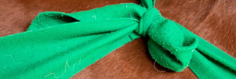 Anke Recktenwald Balance Pads Körperbänder Tellington