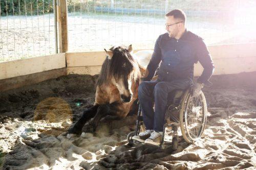Timo-Ameruoso-Pferd-Roundpen