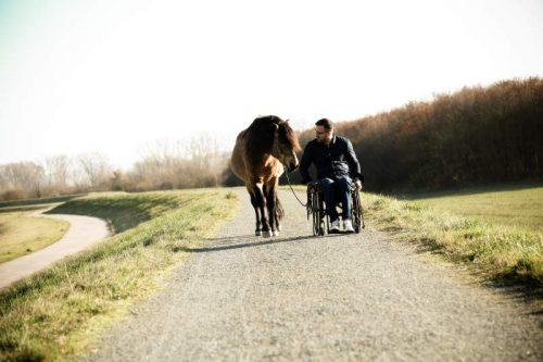 Timo-Ameruoso-rollstuhl-pferd