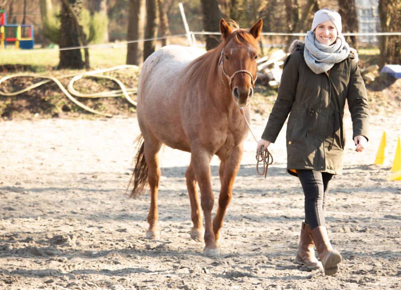 Lifechanger: Wie die Pferde das Leben verändern 4