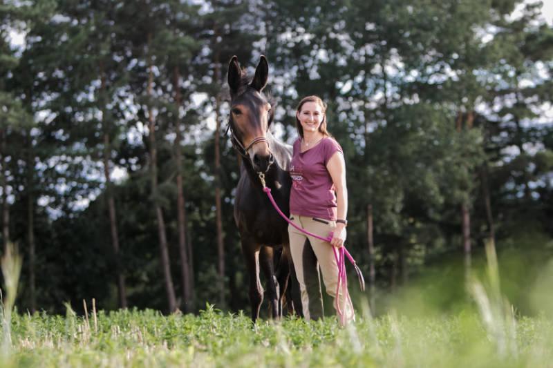 Wie du ein Pferdeführungsmensch werden kannst 3