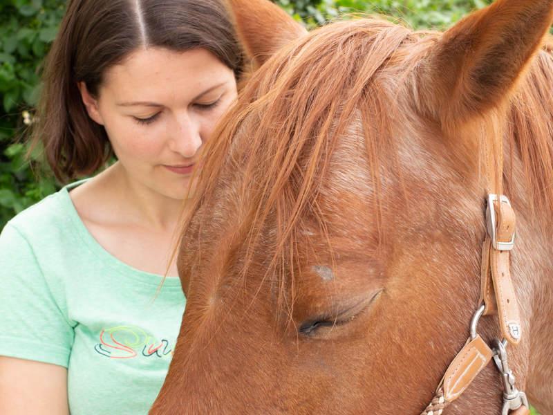 Trust Technique mit dem Pferd