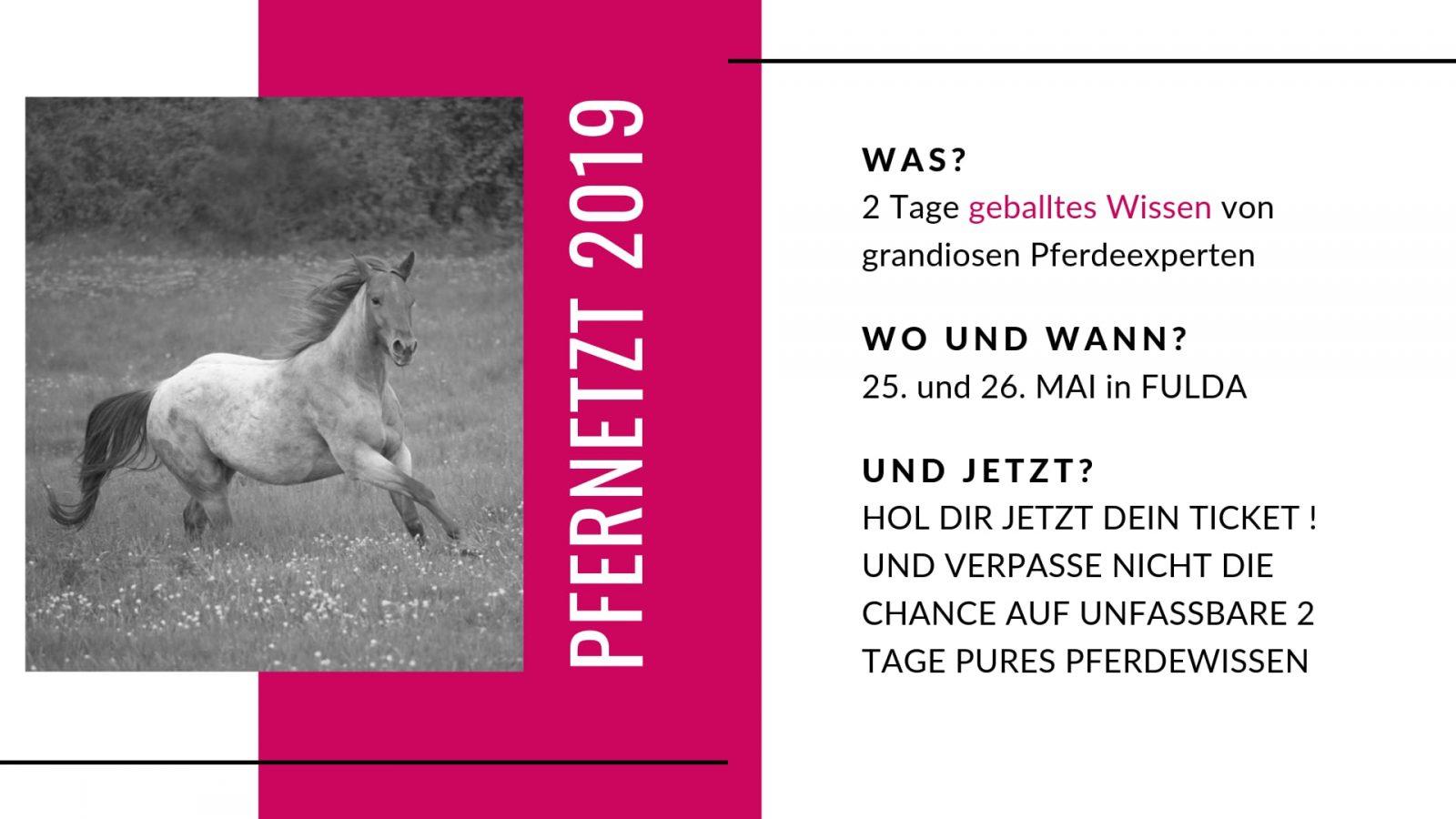 PFERNETZT - Das Event für Pferdemenschen 2019