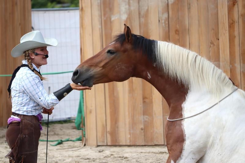 Wie du ein richtig gelassenes Pferd bekommst! Tipps von einer Stuntfrau aus ihrem Training mit Showpferden 6