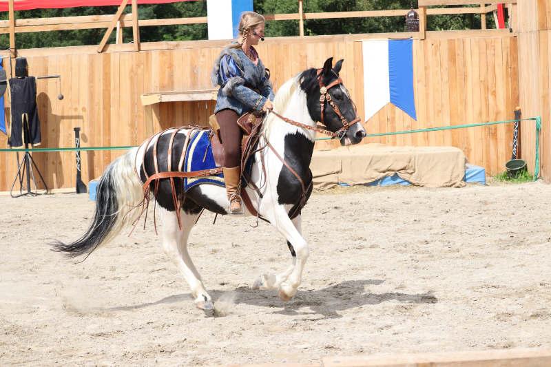 Wie du ein richtig gelassenes Pferd bekommst! Tipps von einer Stuntfrau aus ihrem Training mit Showpferden 13