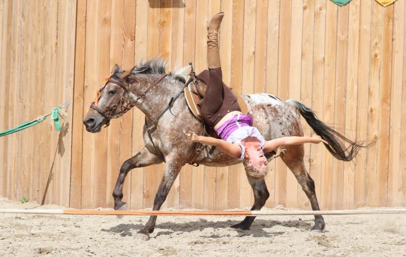 Wie du ein richtig gelassenes Pferd bekommst! Tipps von einer Stuntfrau aus ihrem Training mit Showpferden 4