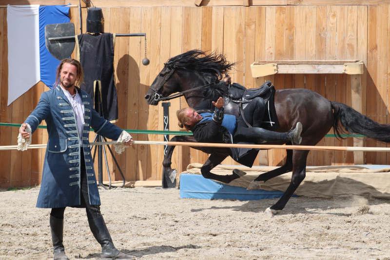 Wie du ein richtig gelassenes Pferd bekommst! Tipps von einer Stuntfrau aus ihrem Training mit Showpferden 9