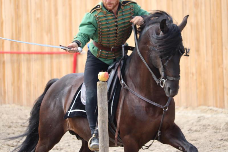 Wie du ein richtig gelassenes Pferd bekommst! Tipps von einer Stuntfrau aus ihrem Training mit Showpferden 2