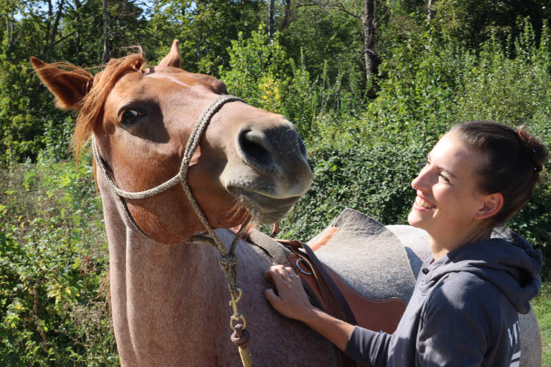 Dein eigenes Pferd - 6 Dinge, die Dir vorher keiner sagt 4