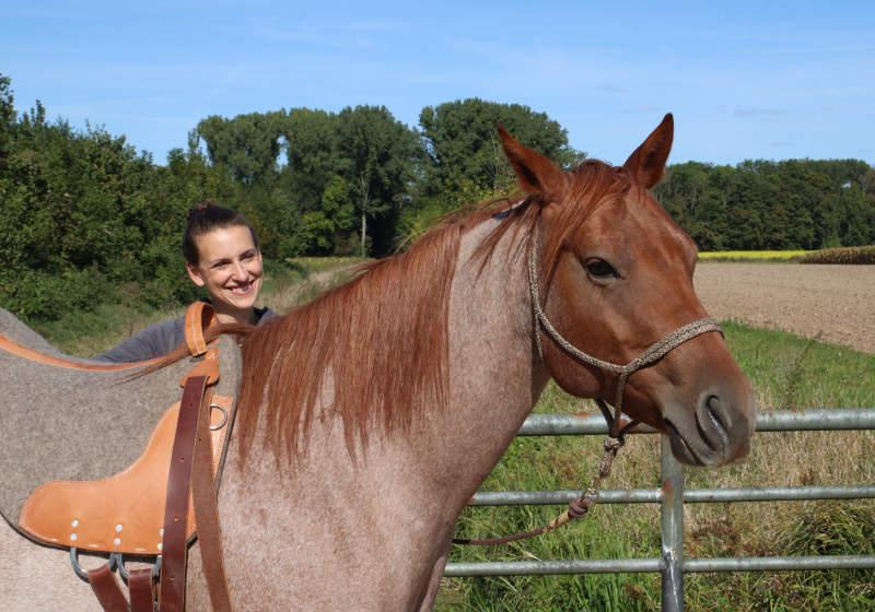 Dein eigenes Pferd - 6 Dinge, die Dir vorher keiner sagt 6