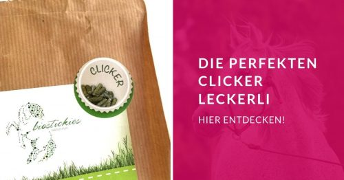 Clickern 5