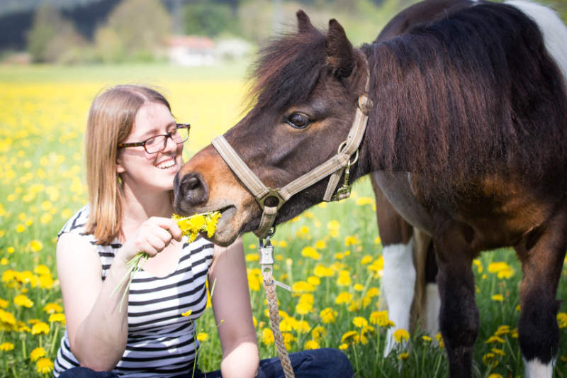 Die 5 größten Irrtümer der Pferdefütterung 2