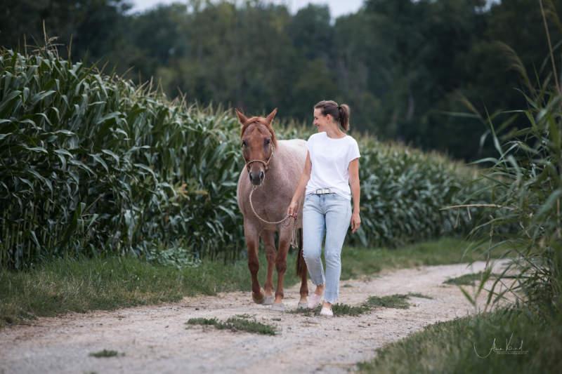 Führtraining mit dem Pferd! So gelingt dein Einstieg 1