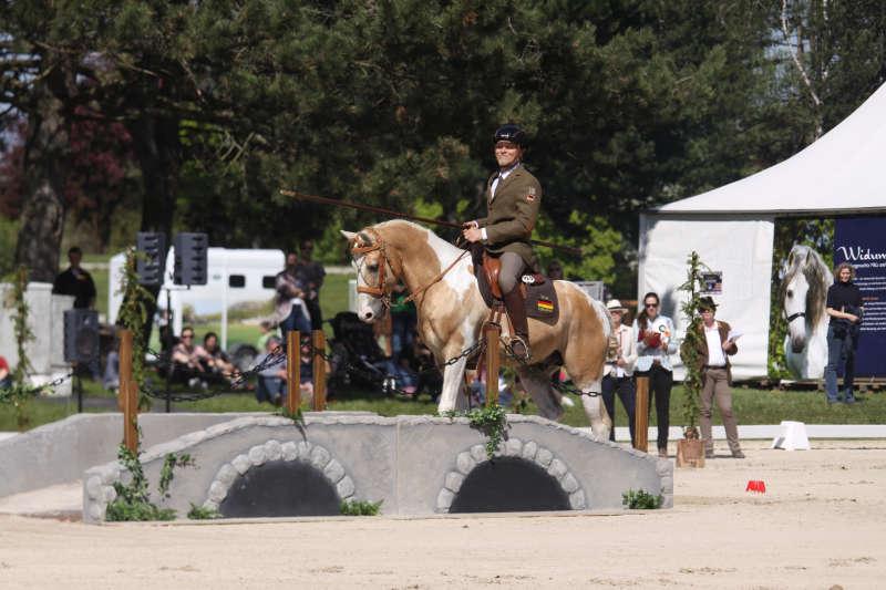 Working Equitation! Eine Reitdisziplin für mehr Bindung und Vertrauen 7