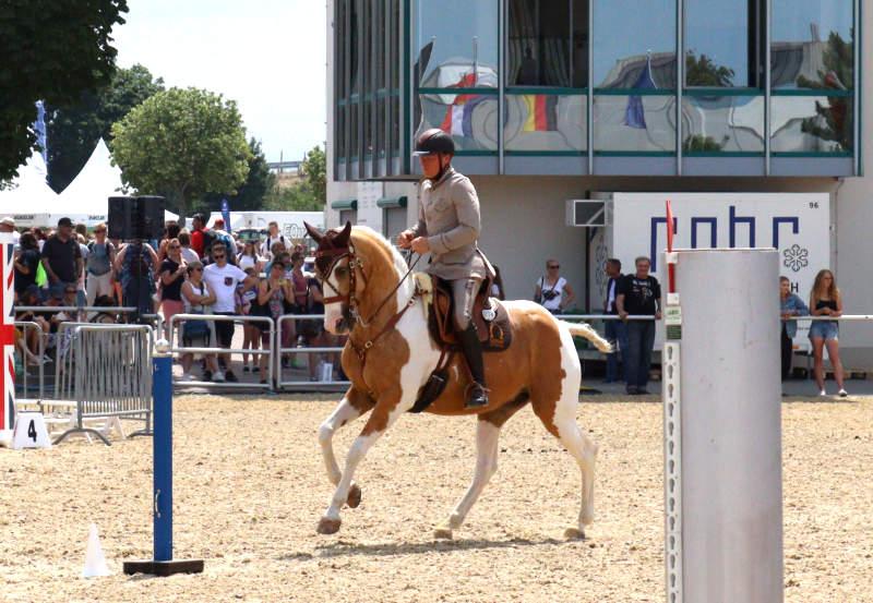 Working Equitation! Eine Reitdisziplin für mehr Bindung und Vertrauen 2