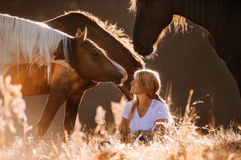 Die besten Tipps und Tricks für schöne Pferdefotos 5