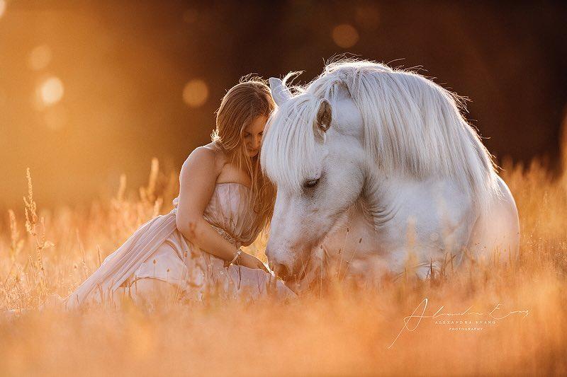 Die besten Tipps und Tricks für schöne Pferdefotos 11