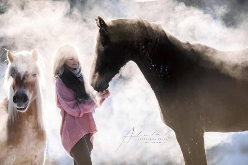 Die besten Tipps und Tricks für schöne Pferdefotos 14