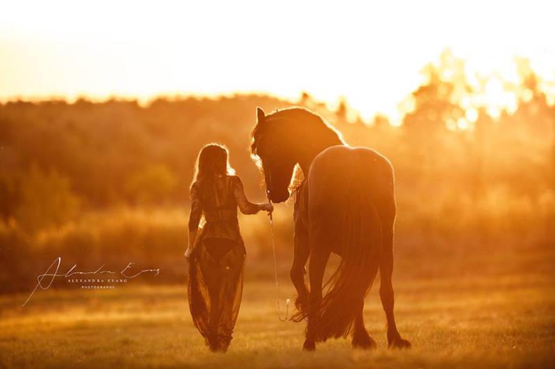 Die besten Tipps und Tricks für schöne Pferdefotos 12