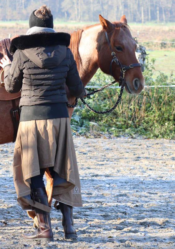 """Sattelzwang ade! So wirst du tiefsitzende Probleme deines Pferdes """"wieder los"""" 10"""