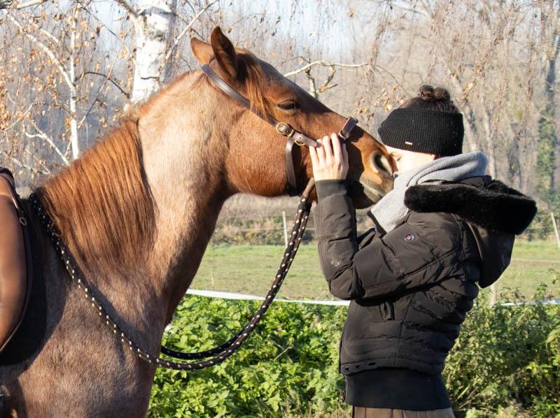 Pferde reiten! Warum das keine Selbstverständlichkeit ist 9