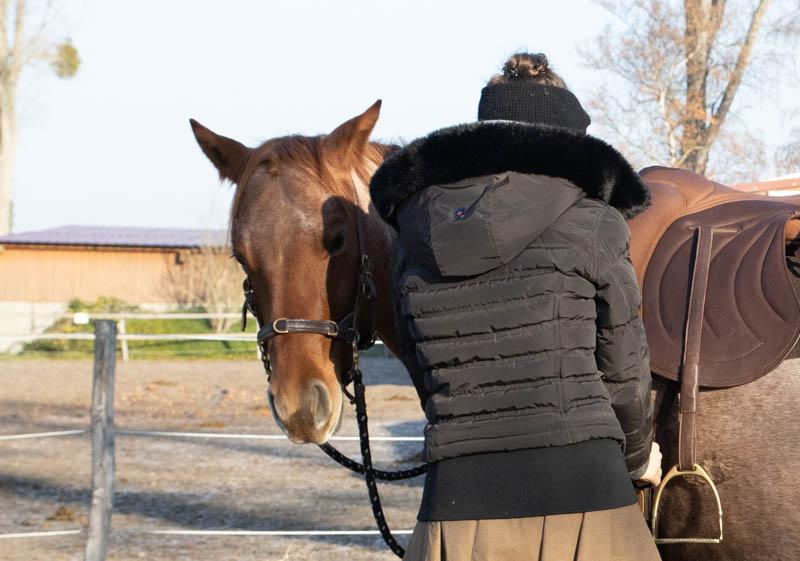 """Sattelzwang ade! So wirst du tiefsitzende Probleme deines Pferdes """"wieder los"""" 2"""