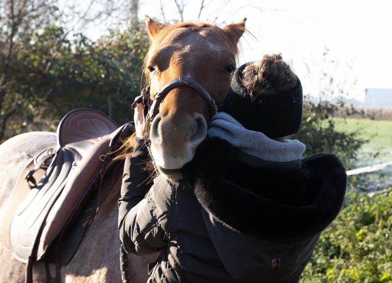 """Sattelzwang ade! So wirst du tiefsitzende Probleme deines Pferdes """"wieder los"""" 4"""