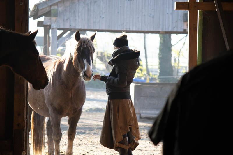 Richtig füttern dank einer Futterberatung fürs Pferd? 6