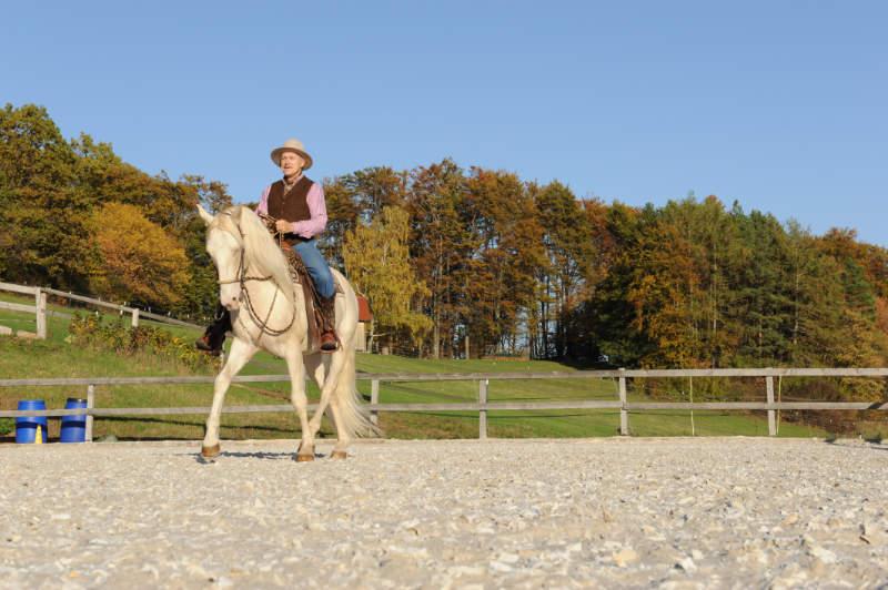 """Harmonie mit dem Pferd: Wie der """"sanfte Touch"""" dir dabei helfen kann 5"""