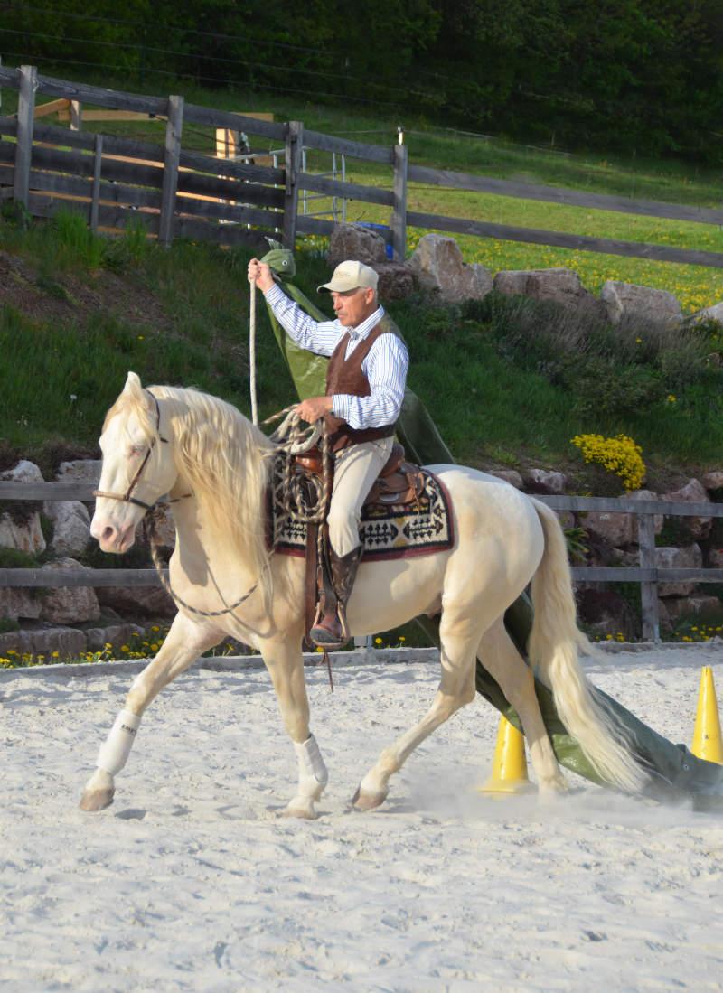 Was einen guten Umgang mit dem Pferd ausmacht 7