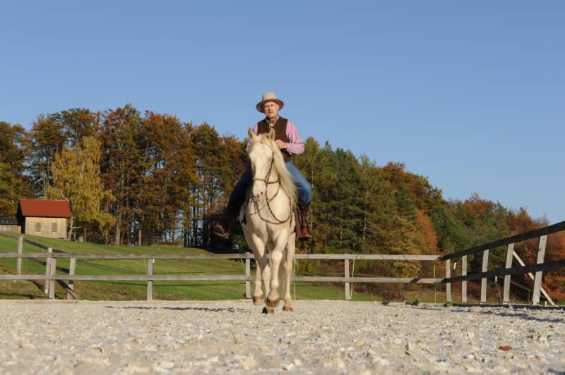 Was einen guten Umgang mit dem Pferd ausmacht 5