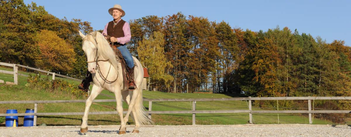 Wie du mehr Harmonie mit dem Pferd erreichen kannst 2