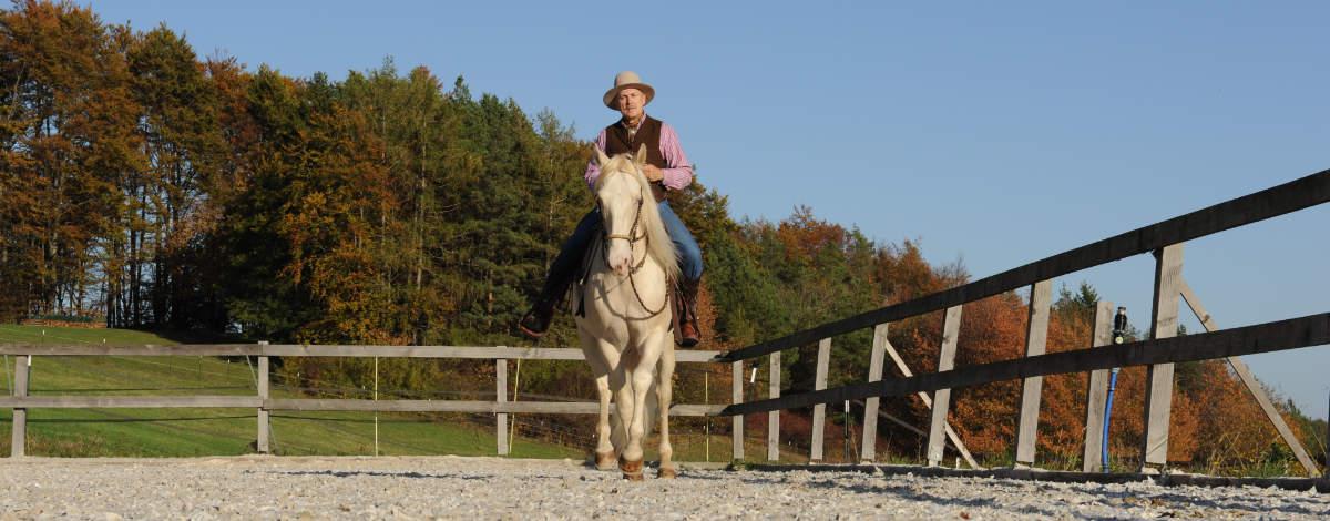 Was einen guten Umgang mit dem Pferd ausmacht 2