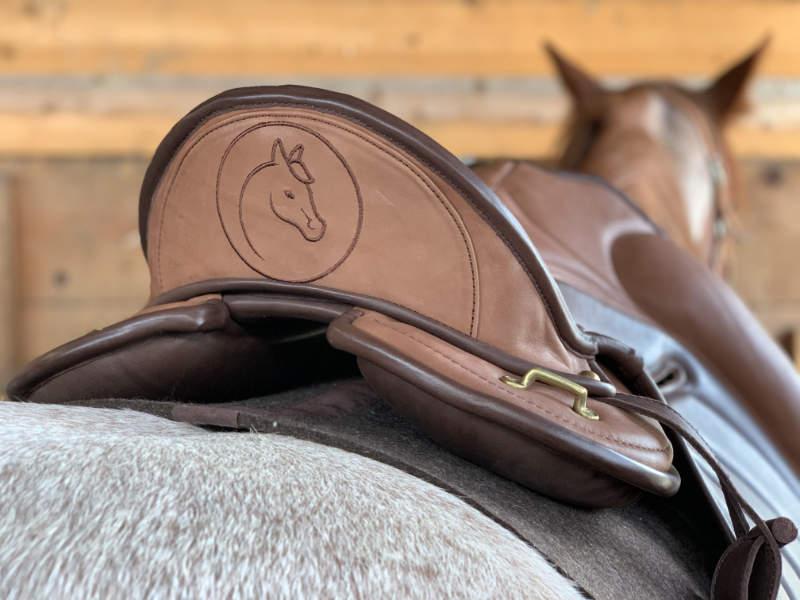 """Sattelzwang ade! So wirst du tiefsitzende Probleme deines Pferdes """"wieder los"""" 11"""