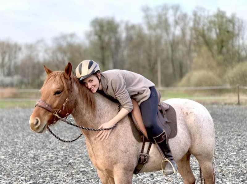 Dickes Pferd! Was du wirklich tun kannst damit dein Pferd abnimmt 4