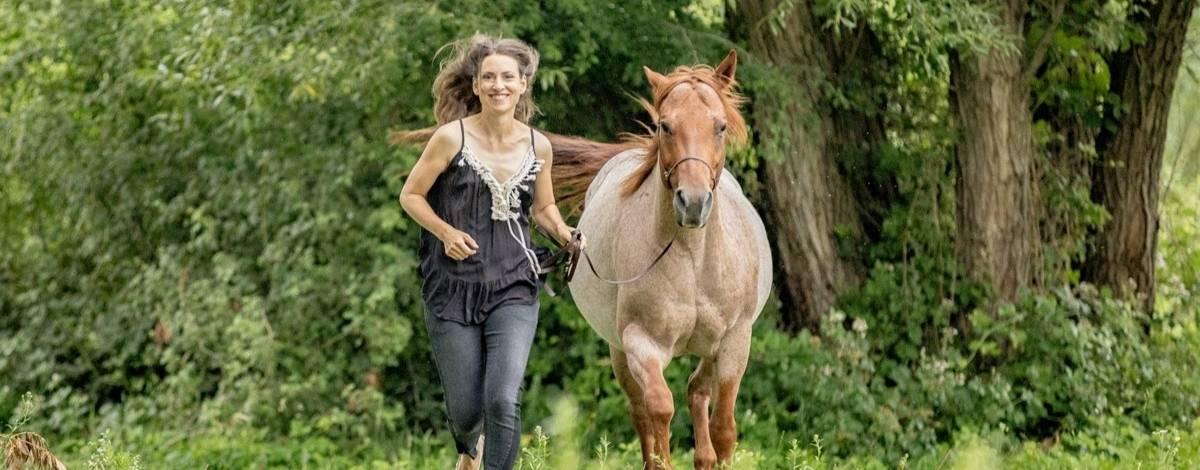 Kolik beim Pferd! Alle wichtigen Facts auf einen Blick 6