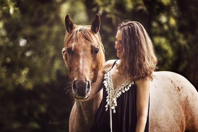 Pferdemensch! Wie du Harmonie und feinstes Reiten erreichst 2