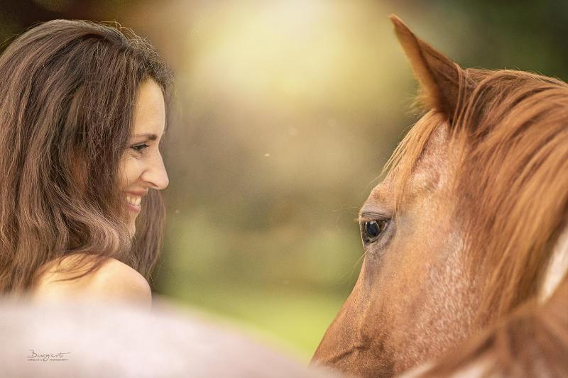 Pferdemensch! Wie du Harmonie und feinstes Reiten erreichst 1
